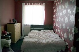 lodger needed for our spare room
