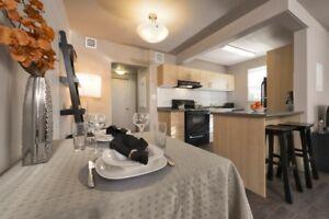Grandview Apartments, Bachelor Apartment for Nov 1