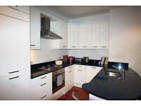 SW17-Balham-High Standard 1 BED-Spacious Living Room-Bright and airy-Perfect location-31 October