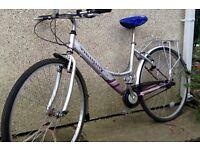 Ammaco Aluminium Ladies Bike in Good condition Kennington Radley Oxfordshire
