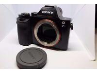 Sony Alpha A7S 12.2 MP Digital Camera - Black (Body Only)