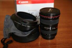 Canon EF 17-40 mm f/4 L USM (excellent condition)
