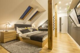 Need Help Building Your Extension or Loft Conversion? We Offer Building Services