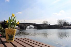 Beautiful 2-bed houseboat for rent - Kew Bridge