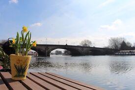 Beautiful 2-bed houseboat for rent - Kew Bridge