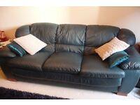 Three Seater Leather Sofa - Teal