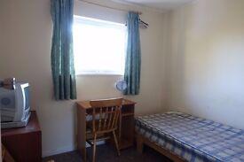 Single room to rent in Oldbrook £350