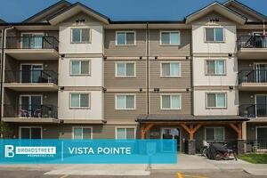Pet Friendly Two Bedroom Apartment w insuite laundry NE Edmonton