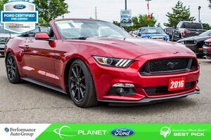 2016 Ford Mustang GT Premium|LEATHER|BACKUP CAM|FORD CERTIFIED