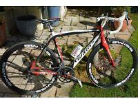 Wilier carbon high spec racing bike