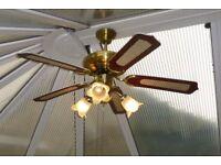 Ceiling Fan / Light