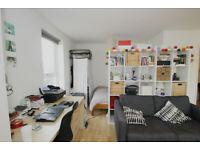 luxury spacious studio apartment on Essex Road- Video tour available