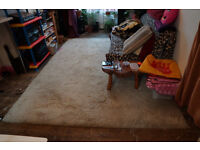 Large, Good Quality, Long Pile, White, Cream, Rug, 11ft x 8ft, Delivery Possible