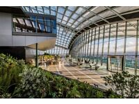 Barback for rhubarb at the Sky Garden Skypod Bar