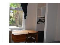 Double room in friendly flatshare - Stoke Newington/Clapton