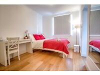 Newly refurbished double bedroom in London Bridge available in September!