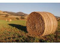 4x4 round hay bales