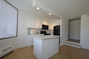 Newly renovated corner 1 bedroom. Open Concept