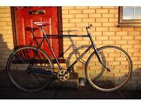 Custom Gazelle Single Speed Coaster/Pedal Brake