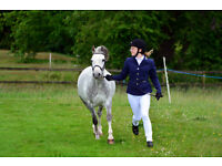 Livery/Grazing/Field/Stables/Yard/Land Required For One Horse