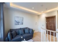 HUGE 1 BEDROOM FLAT AVAILABLE IN A LUXURY DEVELOPMENT IN CENTRAL LONDON~07858427611~GYM~LIFT~ROOF