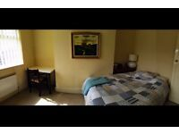 Short-term: Newly refurbished Comfortable double rooms near city center