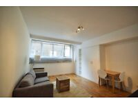 Stunning newly refurbished furnished spacious studio flat opposite Brook Green on lower ground floor