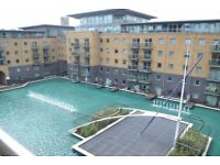 SPECTACULAR TWO BEDROOM, TWO BATHROOM APARTMENT! BEAUTIFUL DEVELOPMENT WITH LAGOON VIEWS - MUST SEE!
