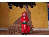 Red Wise Man Fancy Dress Christmas Nativity Childrens Costume Size Medium (5-7)