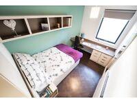 Fantastic modern en-suite one bedroom student apartment at Twerton Mill Bath Spa
