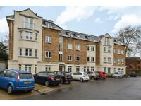 A bright and spacious two bedroom apartment to rent located on Oakwood Avenue- Available March!