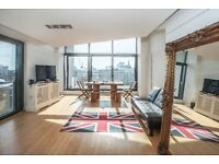 HUGE 2 BED LUXURY PENTHOUSE - SUPER BRIGHT - PRIVATE TERRACE AND BALCONIES -