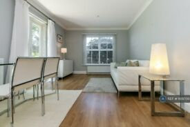 1 bedroom flat in Daysbrook Road, London, SW2 (1 bed) (#1109709)