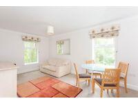 Brilliant 1 Bedroom Flat in Bethnal Green