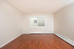 College Plaza Now Offering 1 Bedroom Units Edmonton Edmonton Area image 9