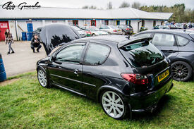 Enthusiast Owned 206 Gti 180