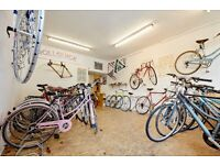Bicycle Mechanic / Shop manager