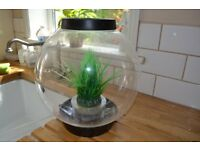 Baby Biorb 15L fish tank and all the accessories needed to get going.