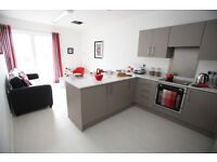 1 bed flat for rent in central location