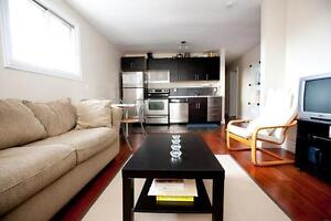Recently Renovated Student Apartment