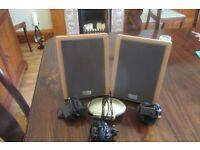 Wireless Stereo Speaker System