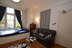 Great looking studio well connected with the city near Ealing Broadway and North Ealing station!