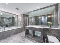 **AN EXCLUSIVE 2 BEDROOM 2 BATH APARTMENT WITH RIVER VIEWS & MARBLE BATHROOMS - STUNNING**