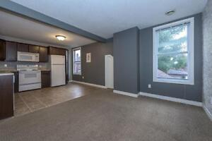 GORGEOUS 2 BEDROOM APARTMENT BY WORTLEY London Ontario image 11