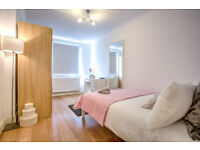 Large Double Bedroom based in London Bridge available in September!