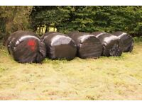 8 LARGE ROUND HAYLAGE BALES AUGUST 2017
