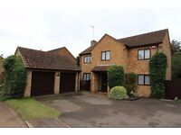 4 Bed Detached for Rent in East Hunsbury, Northampton
