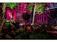 Executive Assistant - rhubarb at The Sky Garden
