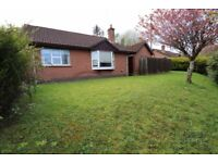 detached house and garage to rent in the limes enniskillen