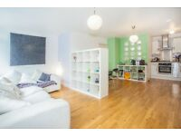 1 BED PROPERTY TO RENT IN STOKE NEWINGTON *MASSIVE LIVING SPACE* *CHARACTER* *MUST SEE*